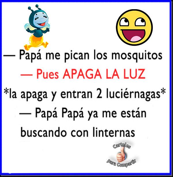 Papá me pican los mosquitos
